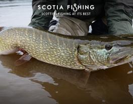gear-fishing-for-pike-scotland-012