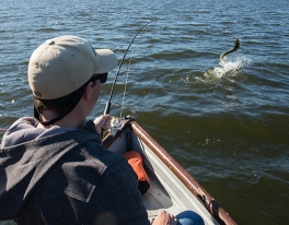 pike-fishing-trips-stirling-084