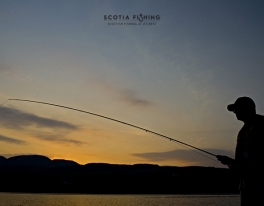guided-evening-pike-fishing-scotland