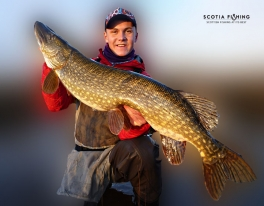 guided-pike-fishing-trips-stirling