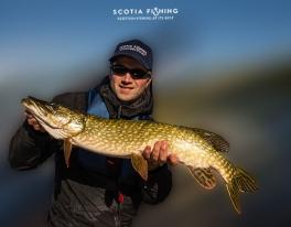 pike-fishing-scotland-uk