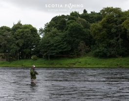 river-tay-salmon-outfitter-03