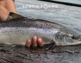salmon-fishing-scotland-7931