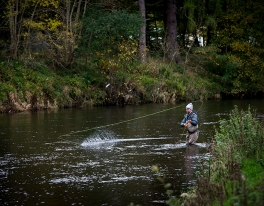 river-tweed-salmon-guide-673