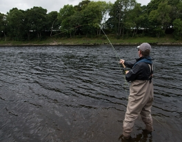 fishponds-river-tay-salmon-fishing-001
