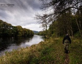 pitlochry-salmon-fishing-trips