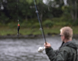 river-tay-salmon-fishing