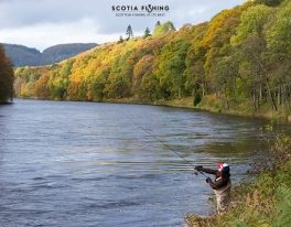 salmon-fishing-scotland-in-september