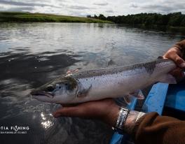 summer-salmon-fishing-scotland