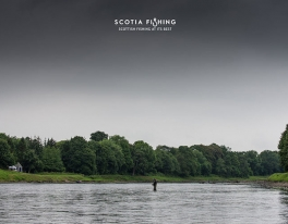tay-salmon-fishing-scotland