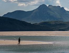 sea-fishing-trips-scotland