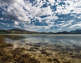shore-fishing-scotland