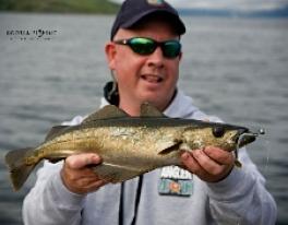 pollock-fishing-scotland-4