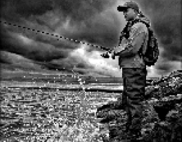 saltwater-fishing-scotland-1