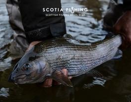 trout-grayling-scotland-61