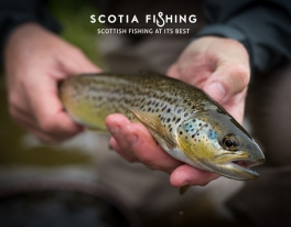 fly-fish-for-trout-scotland-with-professional-guide-04