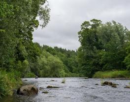 river-teviot-04