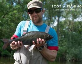 grayling-fly-fishing-scotland-45