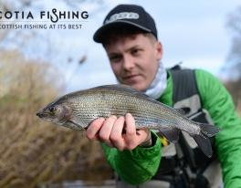 grayling-fishing-trips-uk-scotland