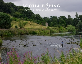 river-earn-trout-fishing