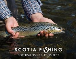 tweed-trout-fishing