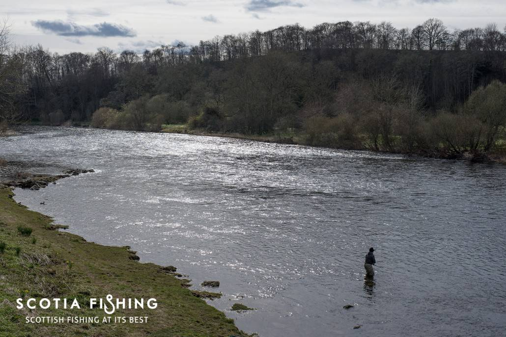river-tweed-guide