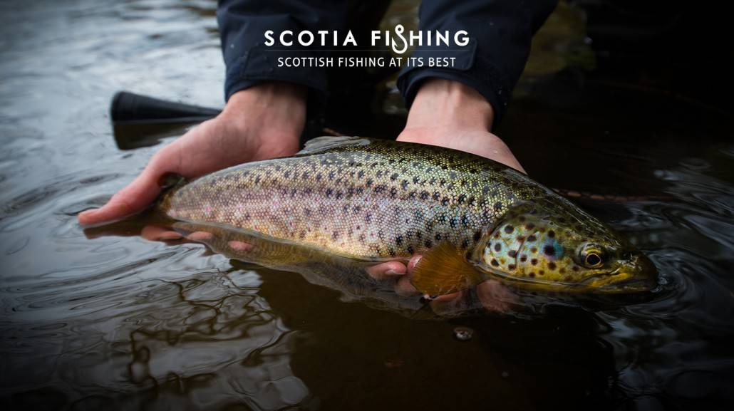 trout-fishing-near-edinburgh
