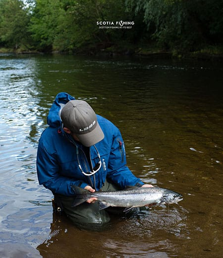 atlantic-salmon-scotland