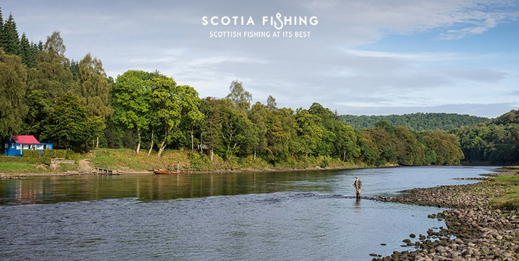 salmon-fishing-near-gleneagles-6