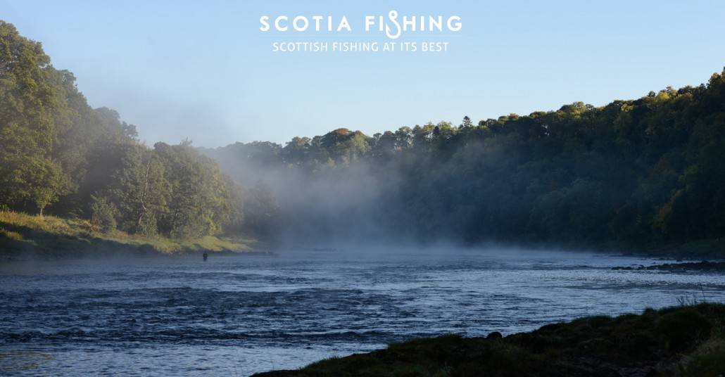 salmon-fishing-on-river-tay