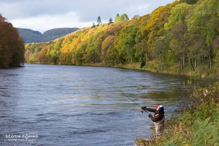 best-salmon-fishing-scotland