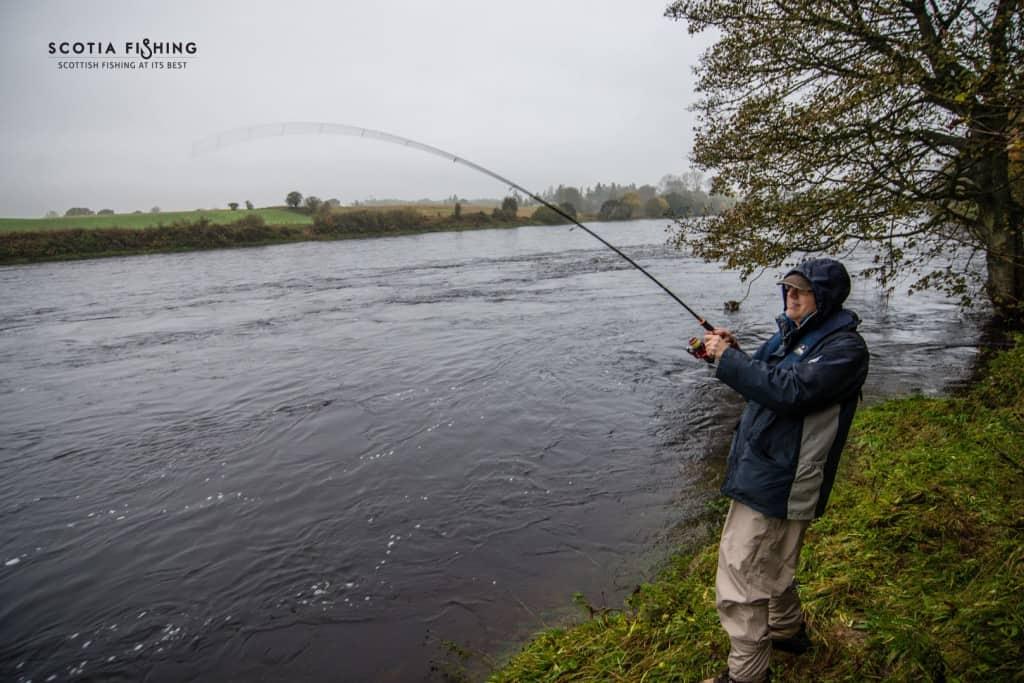 fishing-in-scotland-october-salmon
