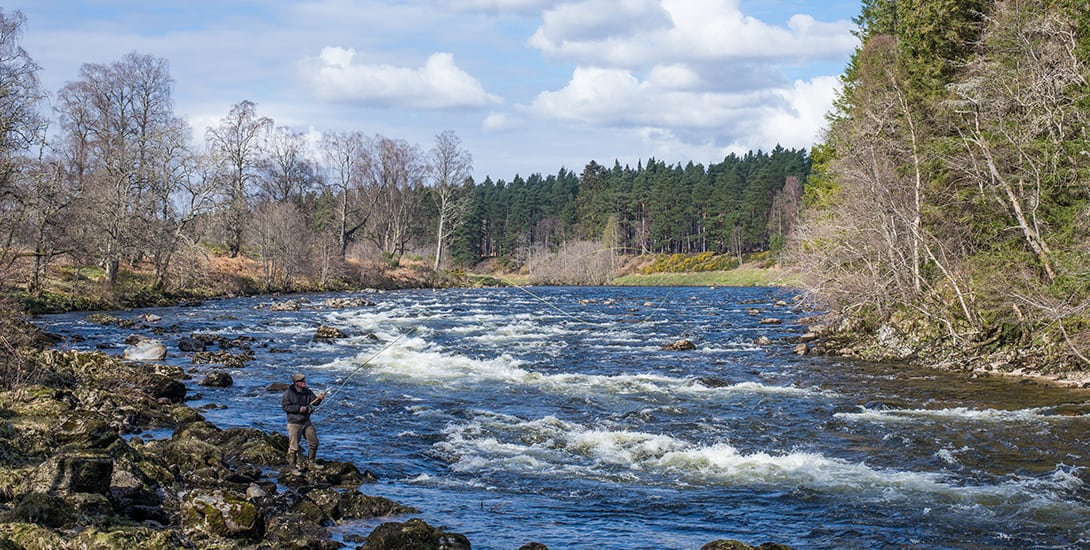 spring-salmon-fishing-scotland-in-April