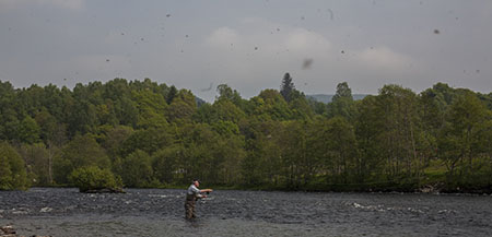 fishing-in-scotland-231