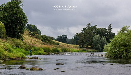 grayling-fishing--in-scotland-with-guide