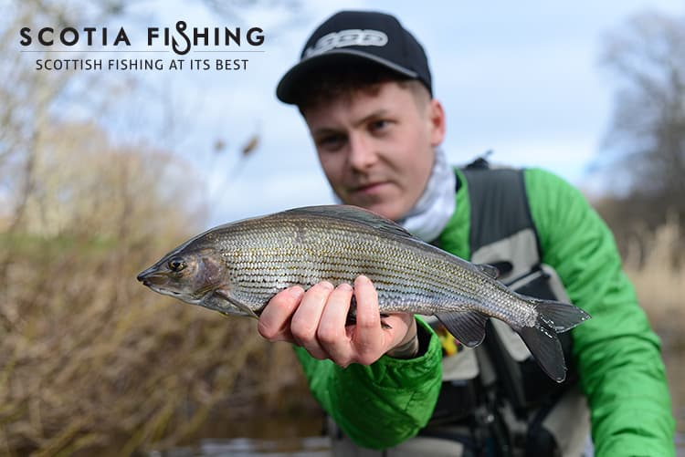 grayling-fishing-trips-near-dundee
