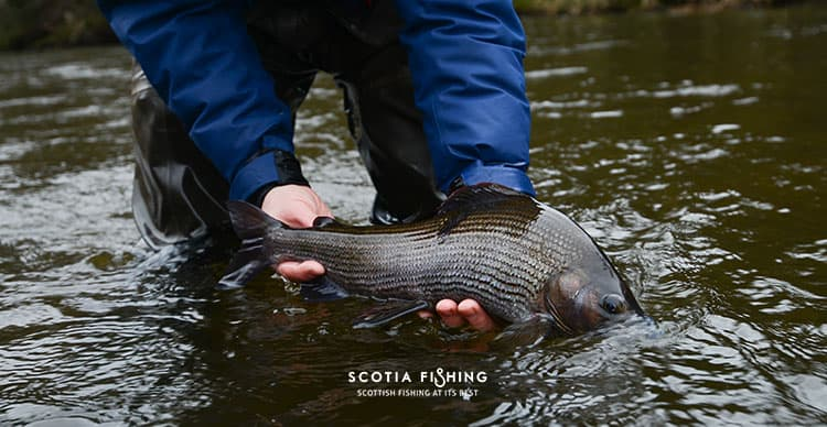 fishing-in-march-scotland-2015