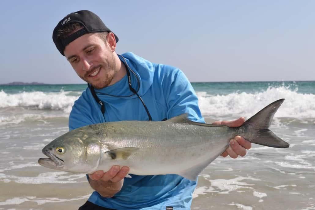 bluefish-oman-fishing