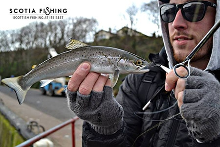lrf-fishing-in-scotland
