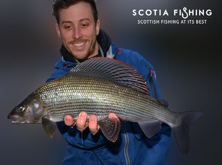 grayling-fishing-in-scotland-uk