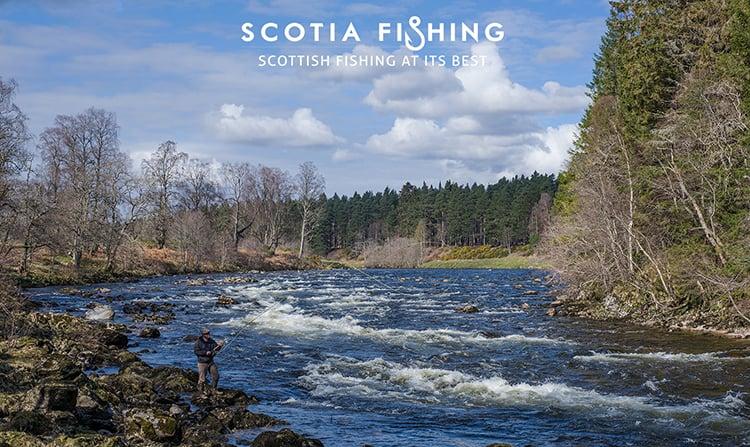 river-dee-salmon-guide