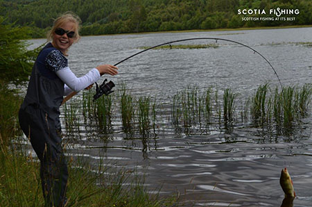 scotland-perch-fishing
