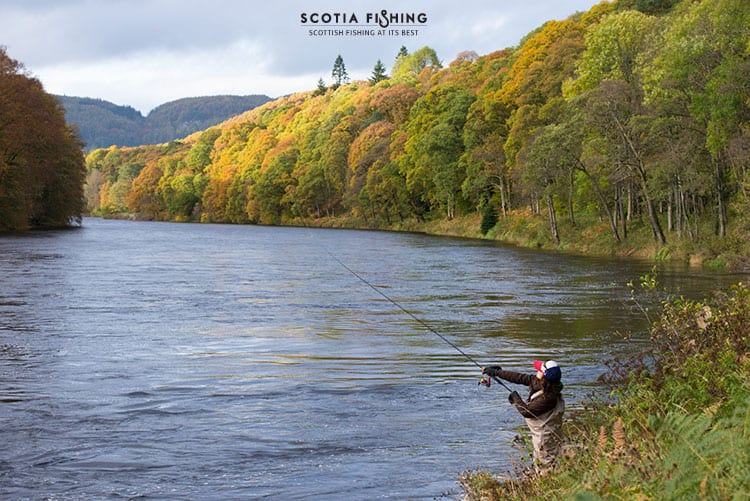 Salmon fishing scotland salmon fishing trips scotland for Fishing in scotland