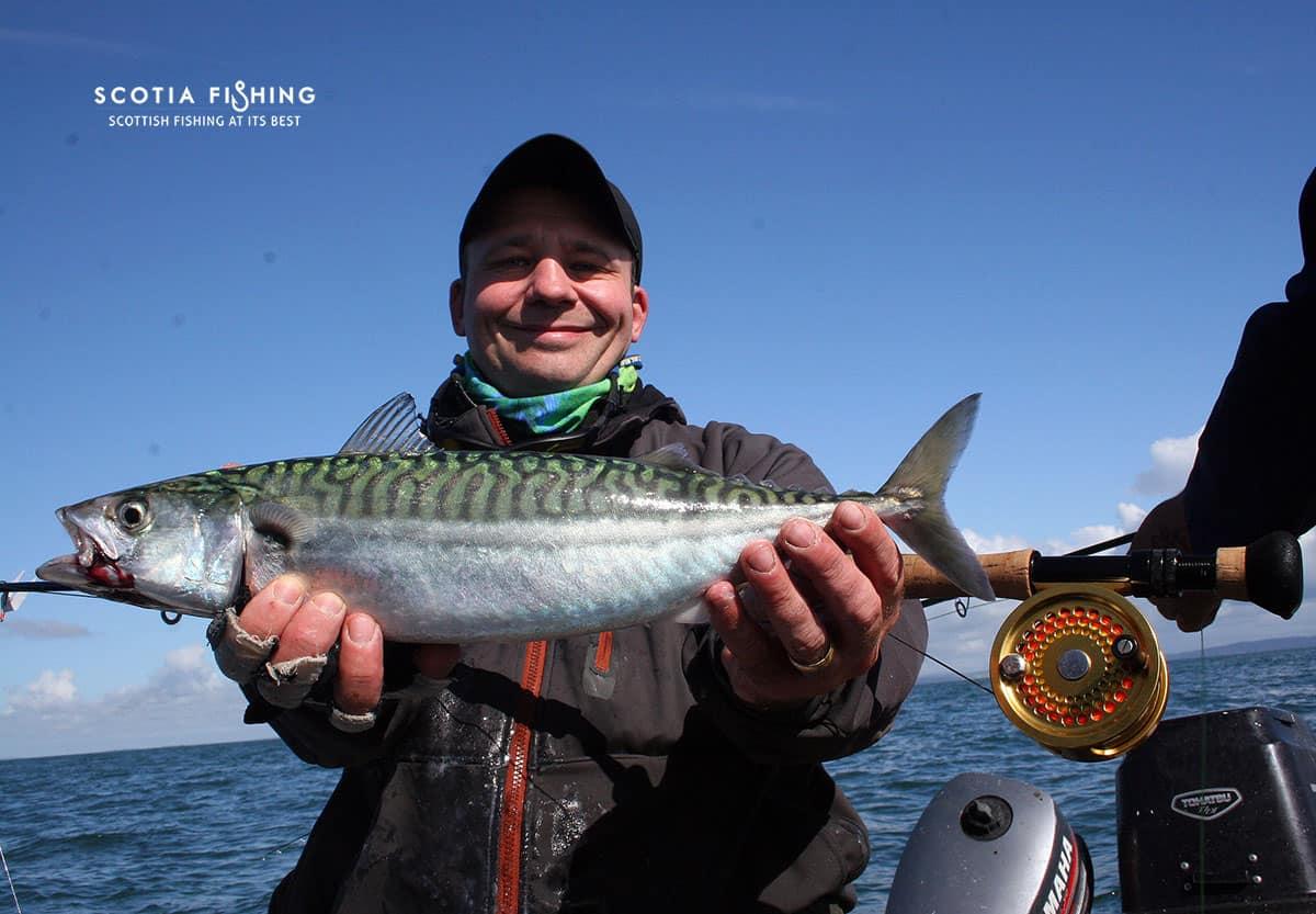 Saltwater fishing scotland saltwater fly fishing for Saltwater fishing video