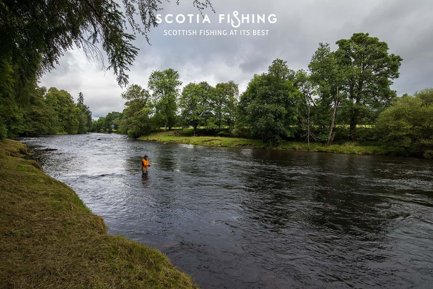fishing-trips-near-loch-lomond-cameron-house