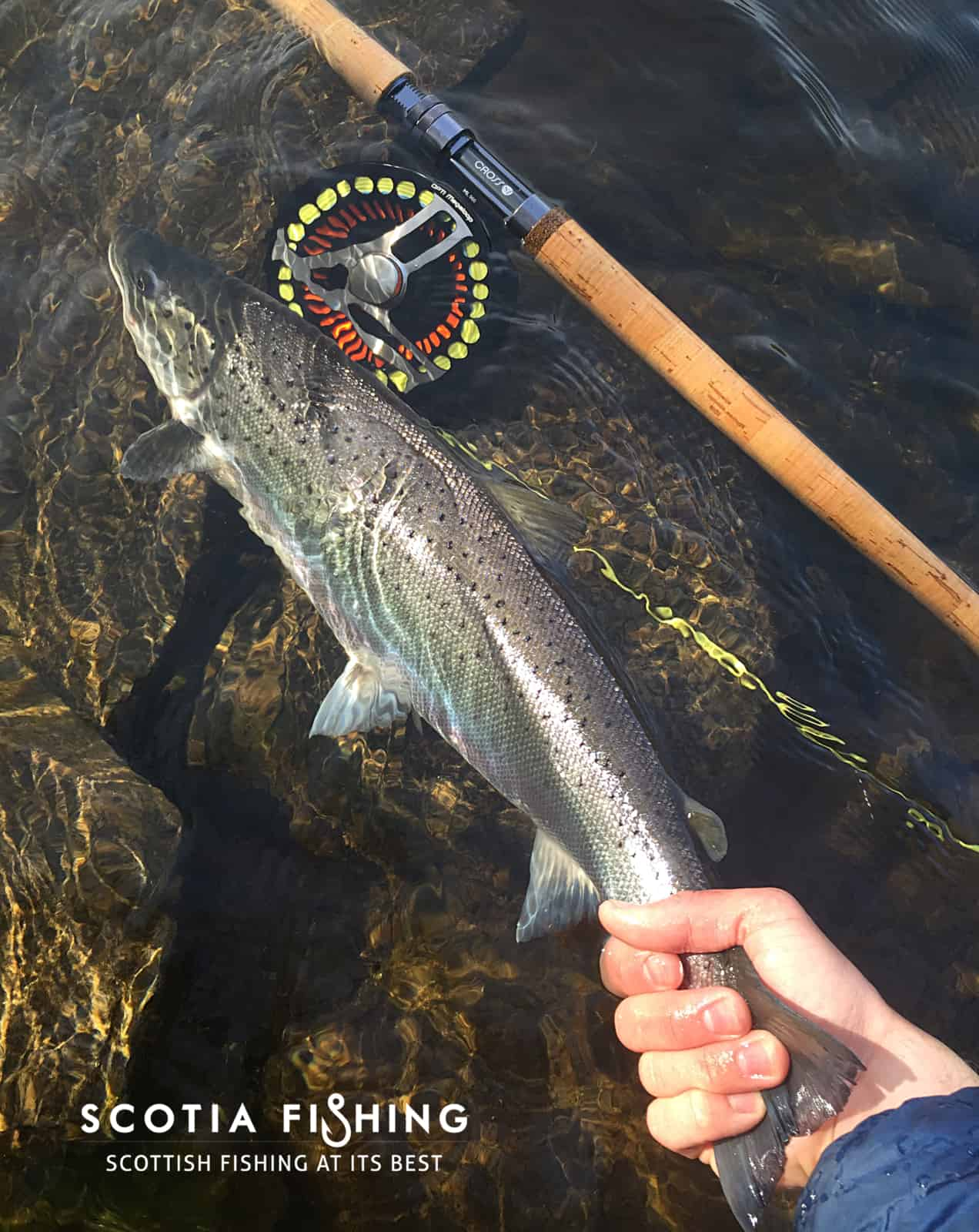 salmon-fishing-trips-near-loch-lomond-cameron-house