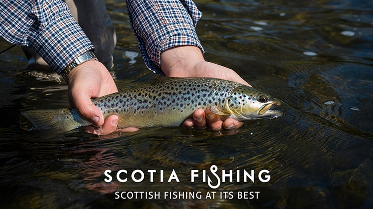 tweed-trout-fishing-narch-april-scotland-2015